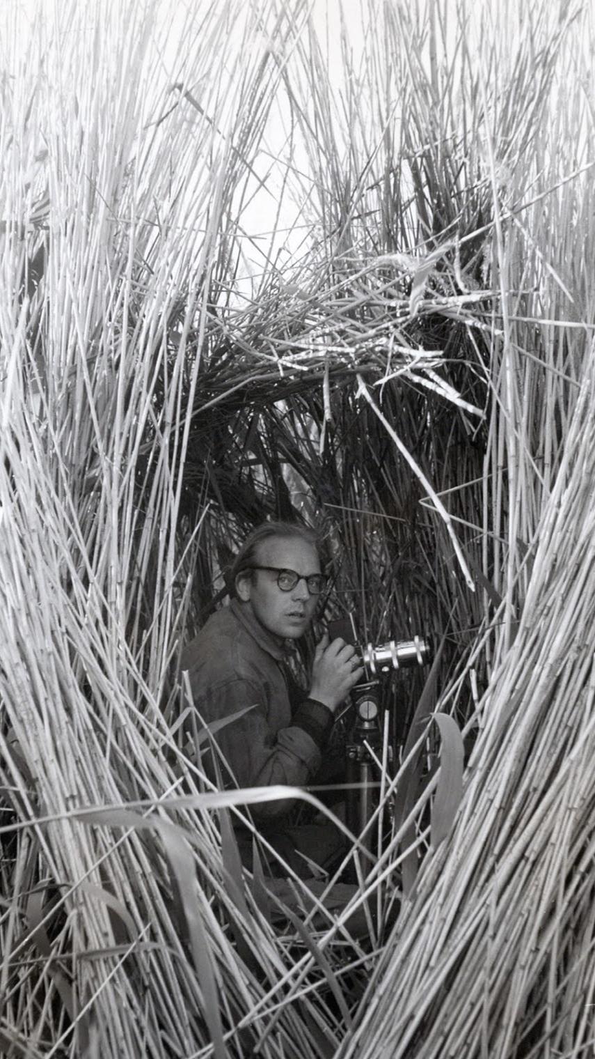 Sven med kameran i högt gräs.
