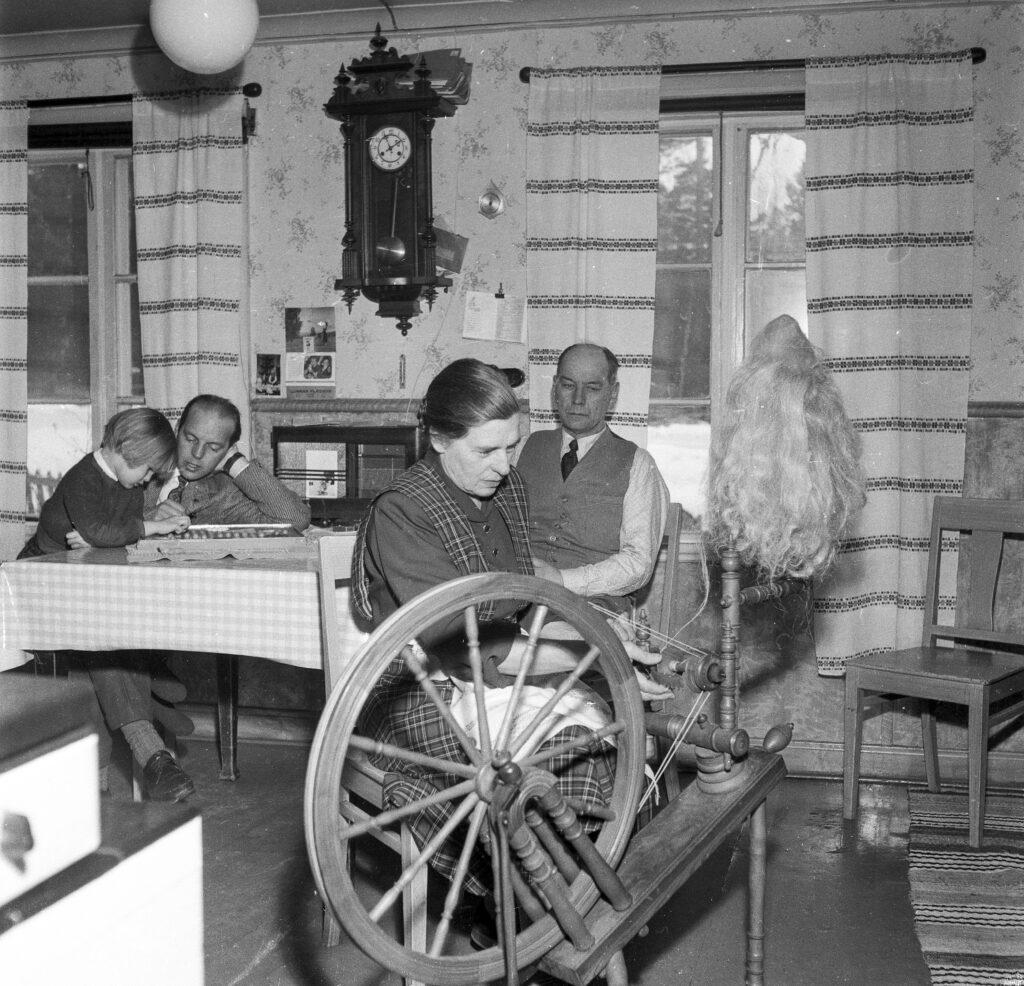 Svea spinner lin i Svens föräldrahem i Njutånger. Pia, Sven och Svens pappa Per-Erik är med på bilden tagen av fotograf Arnold Anderzon, HT.